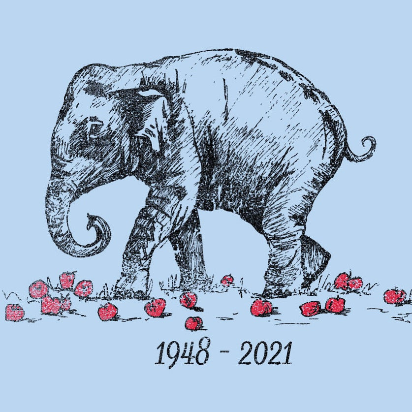 Image of Adult Shirley the Elephant Tees
