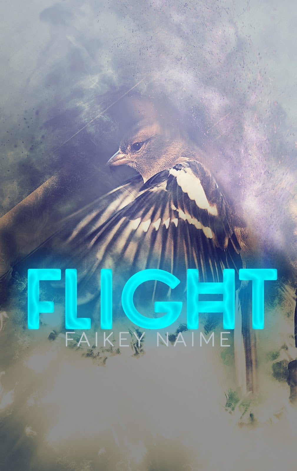 "Image of ""Flight"" Pre-Made eBook Cover Design"