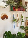 Helena Mini Plant Hanger - Made to Order