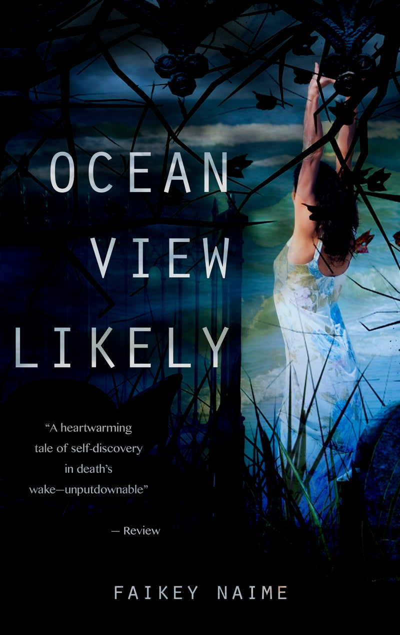"""Image of """"Ocean View Likely"""""""