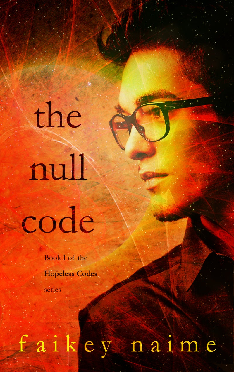 """Image of """"The Null Code"""""""