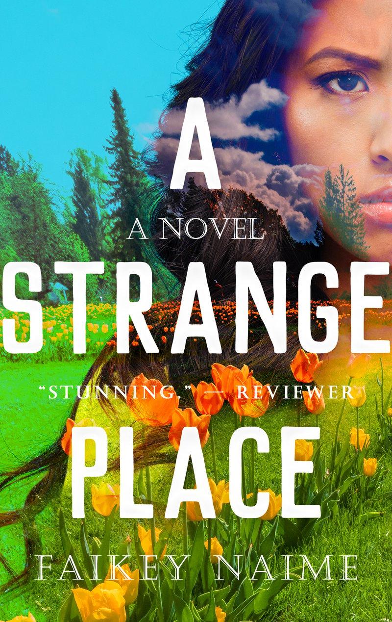 "Image of ""A Strange Place"""
