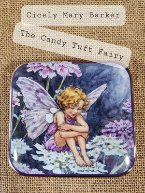 Image of Flower Fairy Tin  - Candy Tuft Fairy