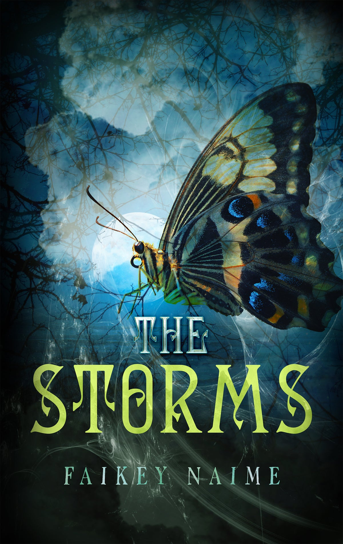 "Image of ""The Storms"""