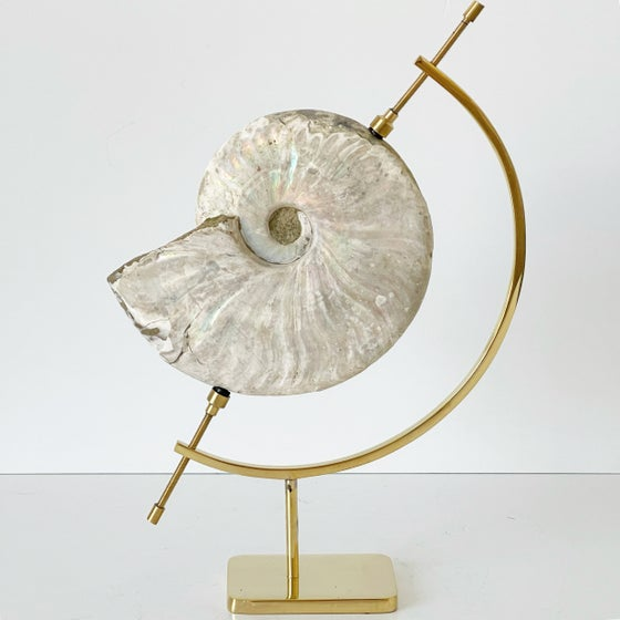 Image of Iridescent Rainbow Ammonite No.75 + Brass Arc Stand