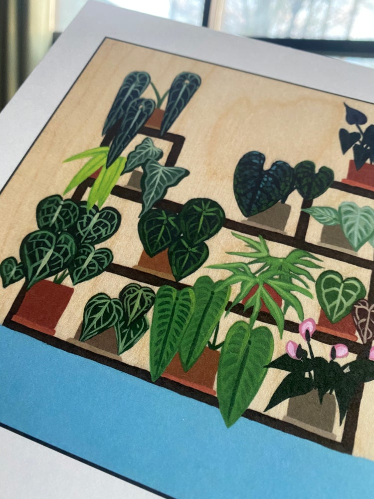 Image of The Anthurium Collection - Print