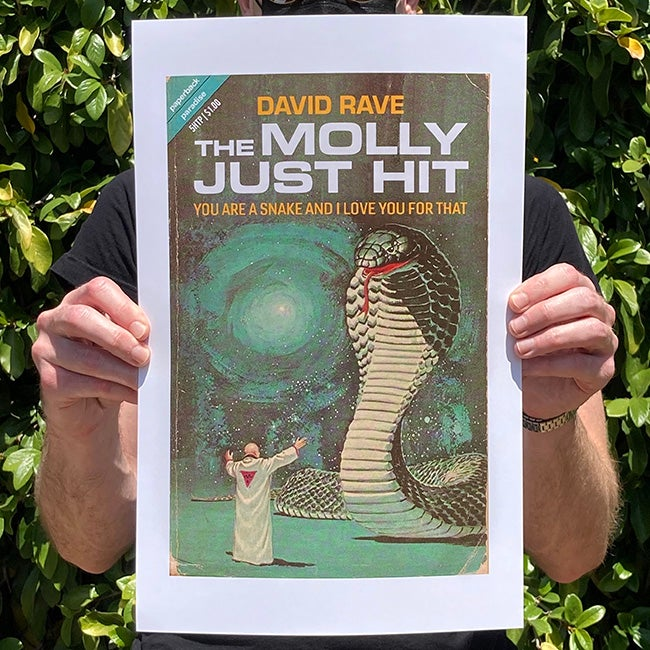 Image of The Molly Just Hit  - 11 x 17 Print