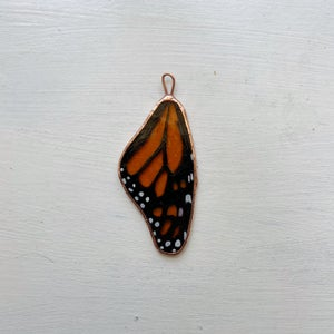 Image of Monarch Wing no.4