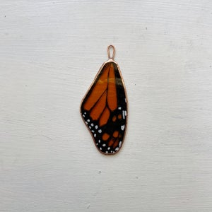 Image of Monarch Wing no.6