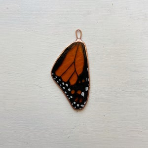 Image of Monarch Wing no.7