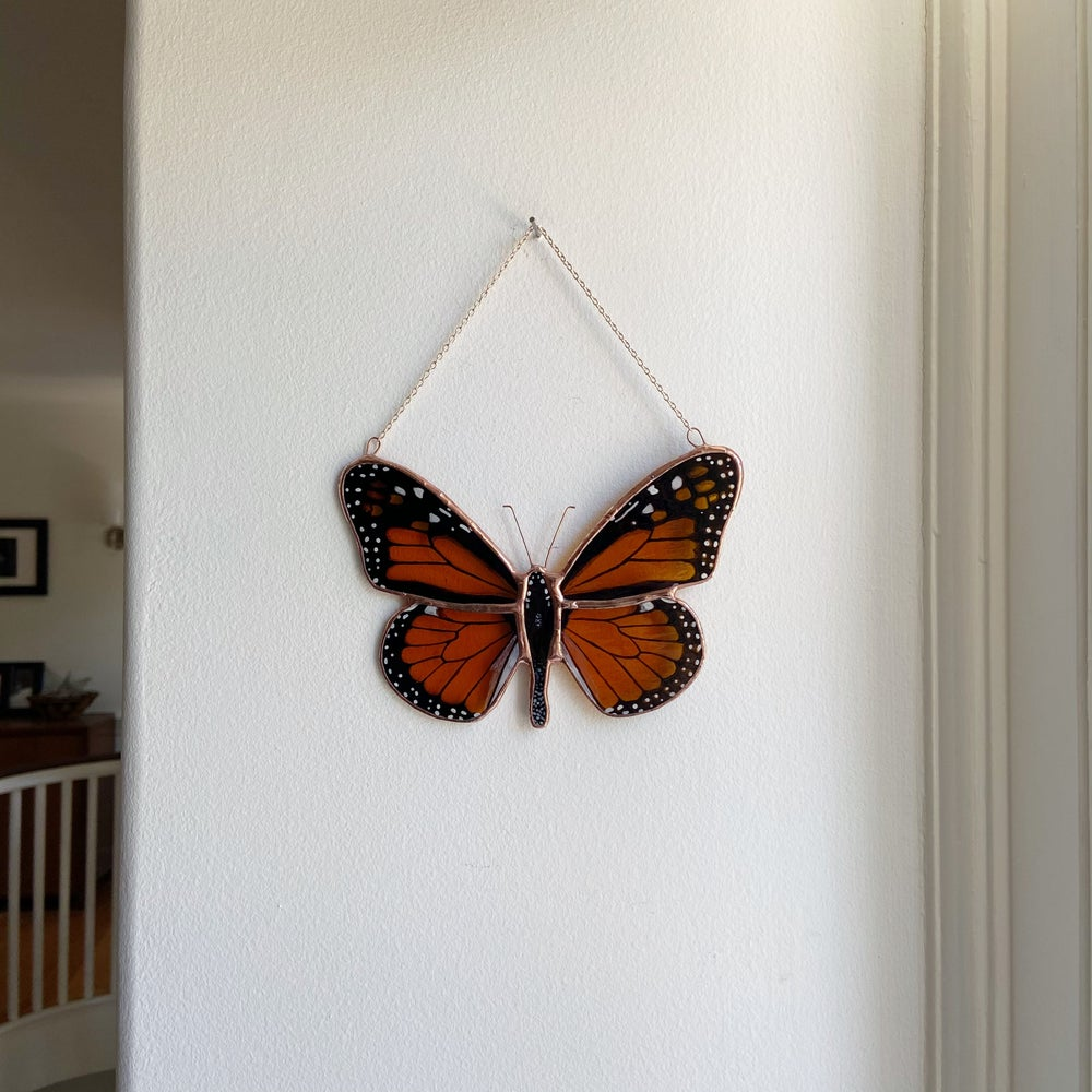 Image of Monarch Butterfly no.1