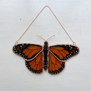 Image of Monarch Butterfly no.2