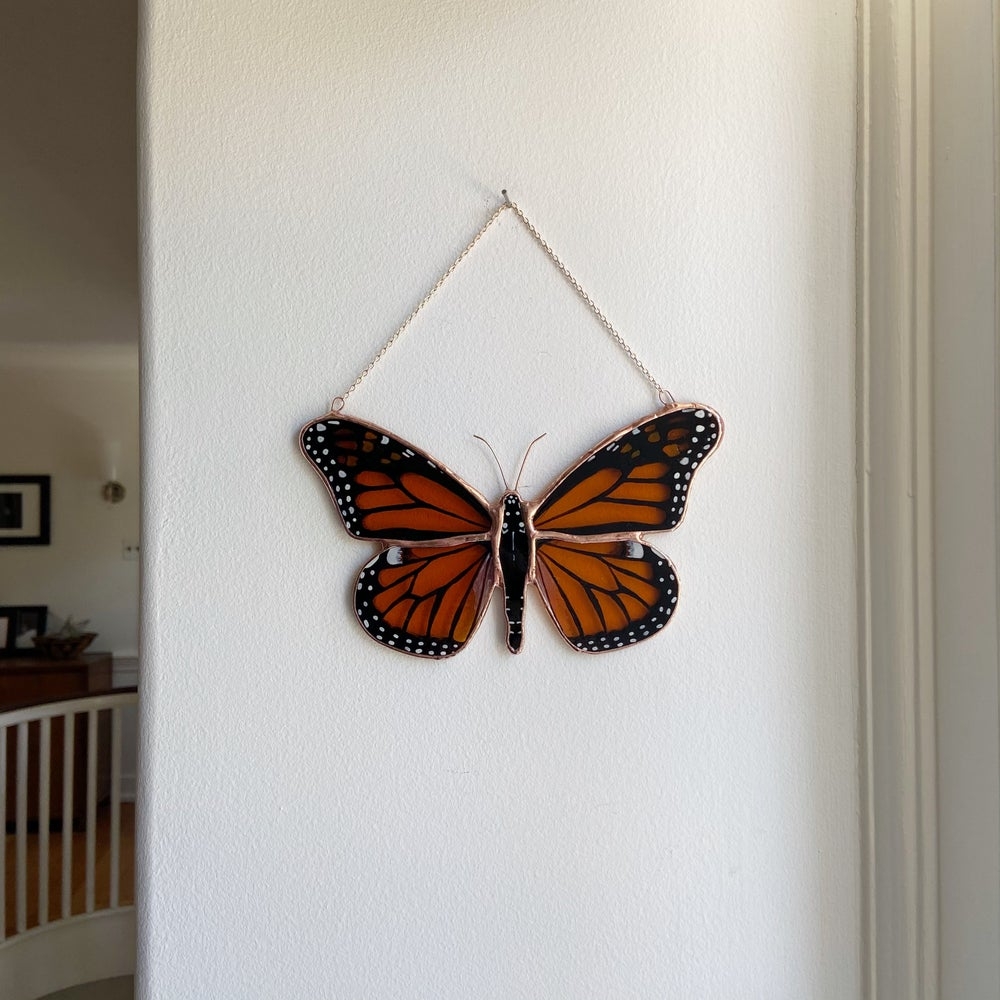Image of Monarch Butterfly no.3