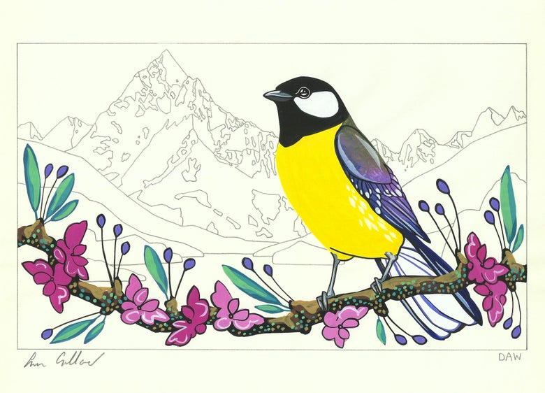 Image of Great Tit and Beatrix