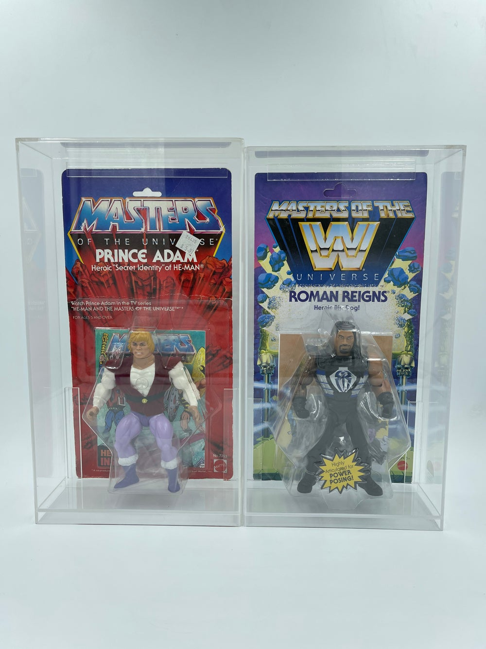 Masters of the Universe Compact Case!