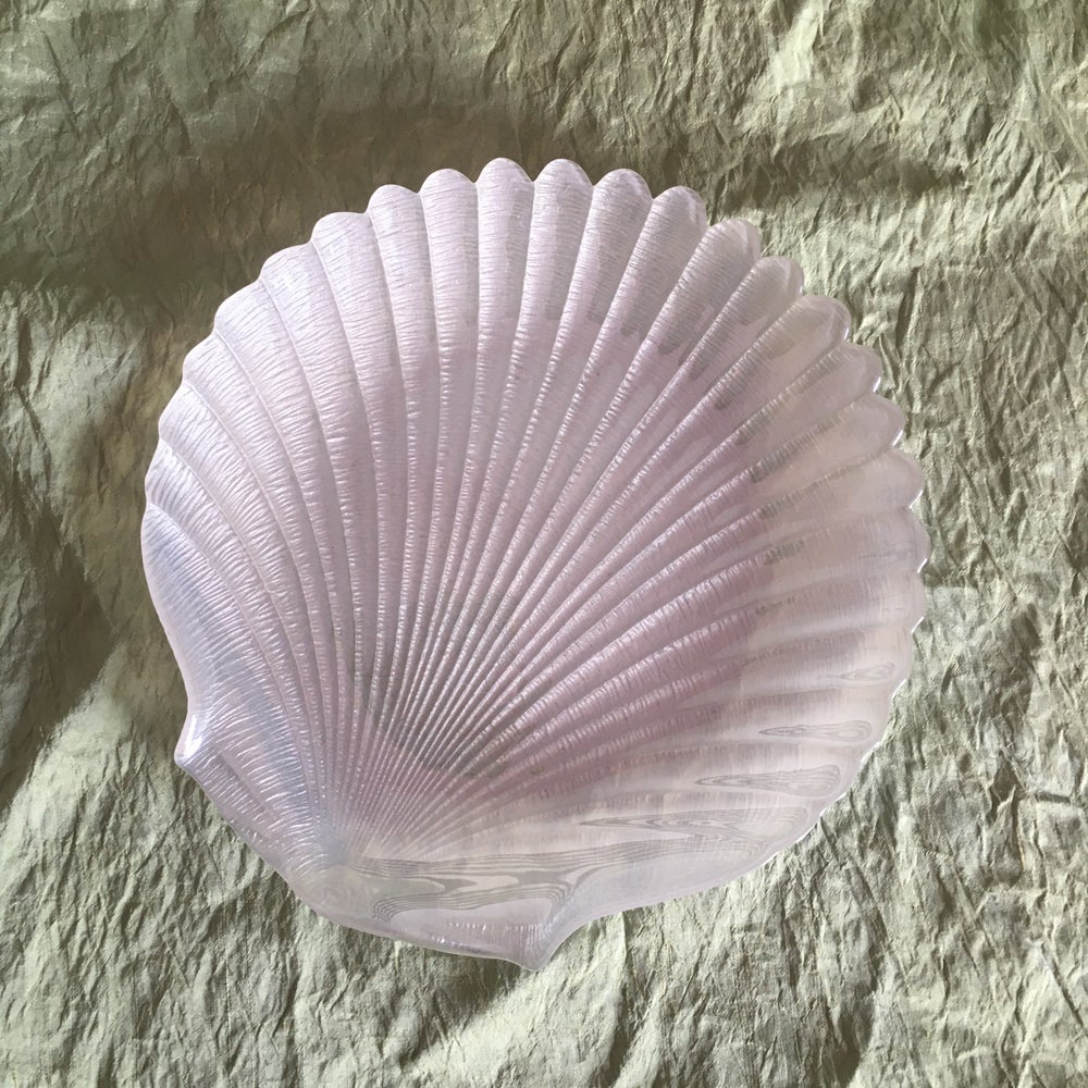 Image of  Glass shell dishes - Sold separately