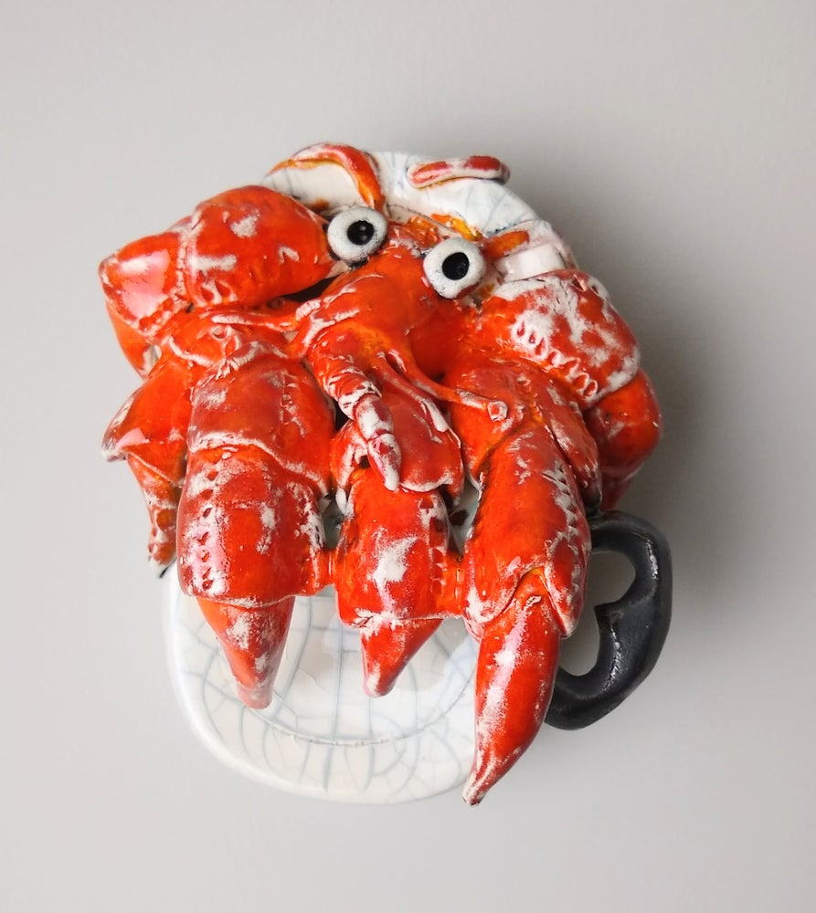 Hermit crab in a tin