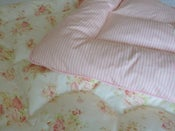 "Image of Beautiful ""Florence"" and Stripe Single Eiderdown"