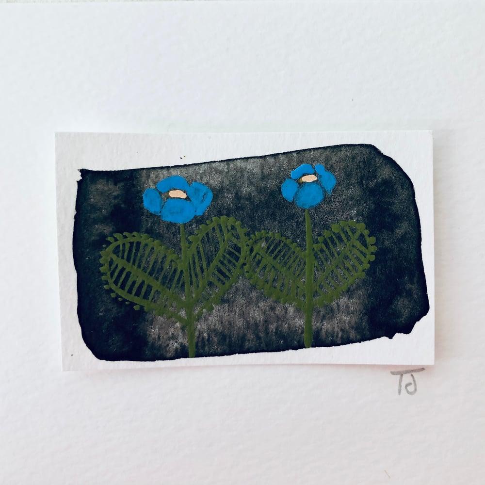 Image of Tiny Secret Garden (vii)
