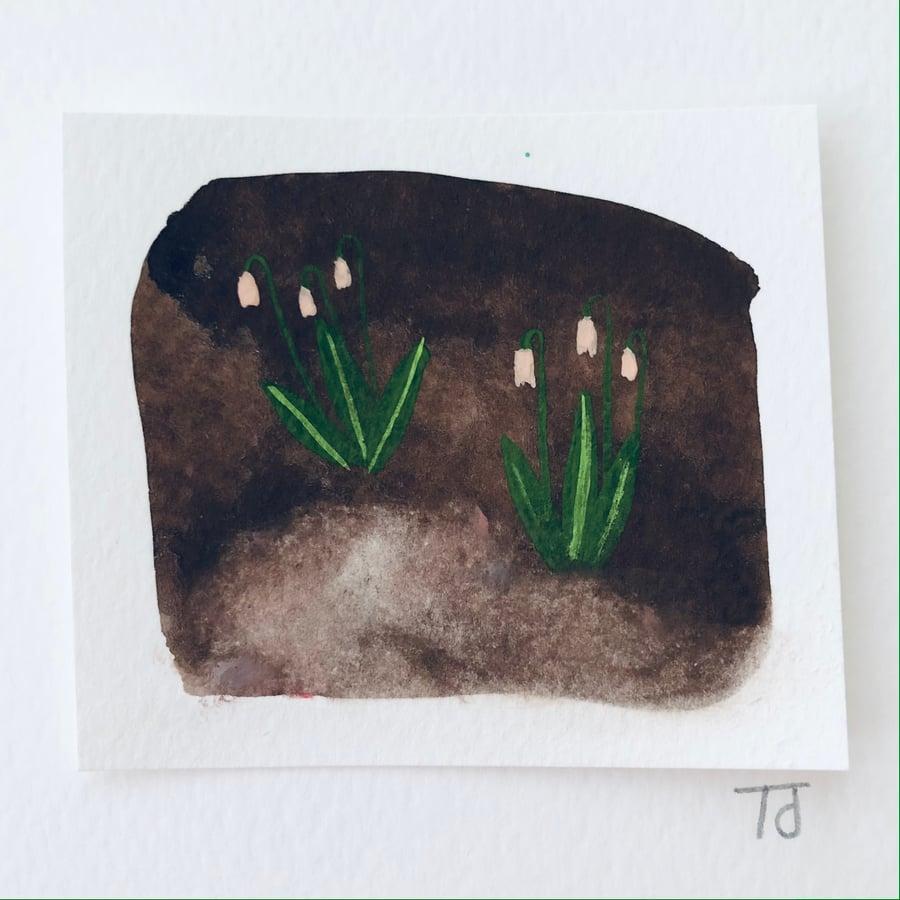 Image of Tiny Secret Garden (iii)