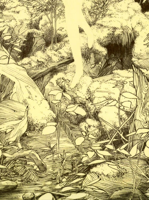 Image of Finding (limited ed. print)