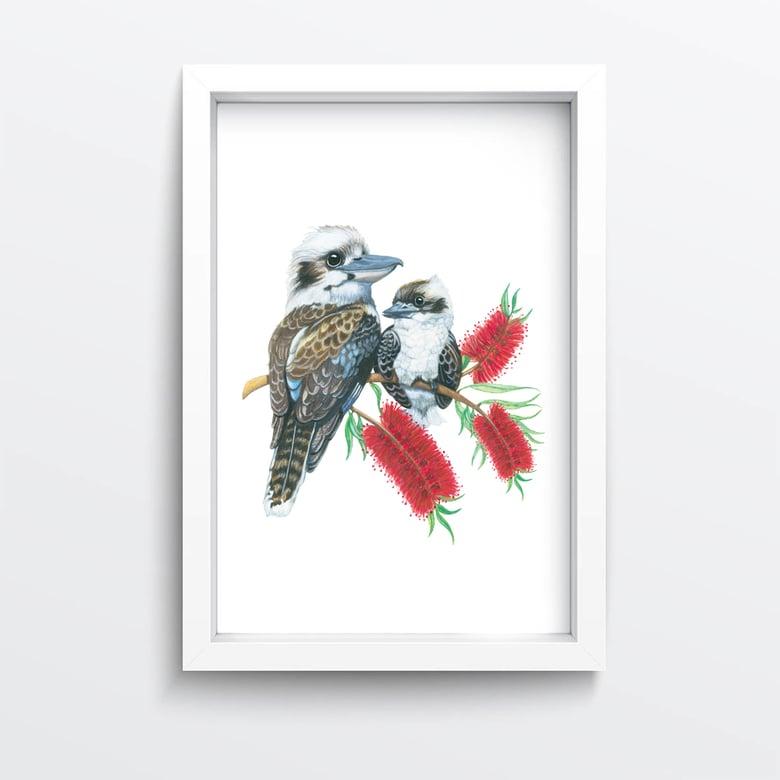 Image of Kookaburra bottlebrush giclée print
