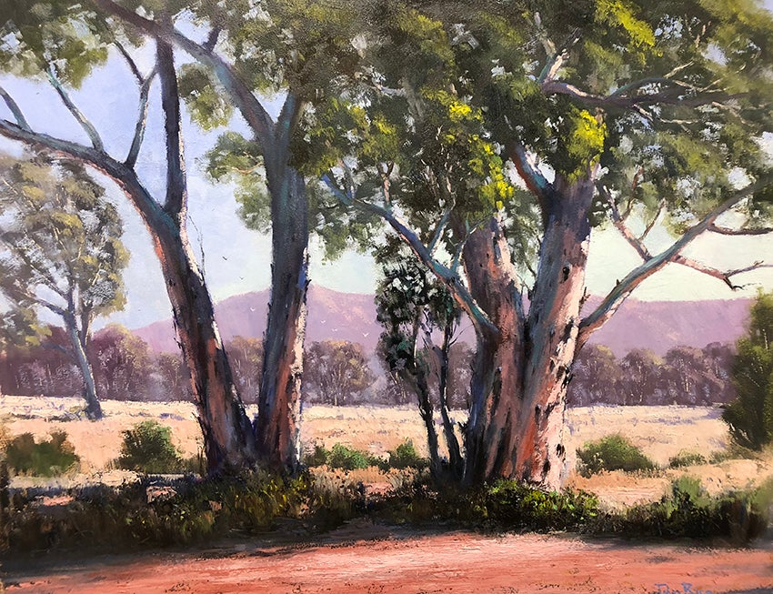 Image of Gums In The Red Centre