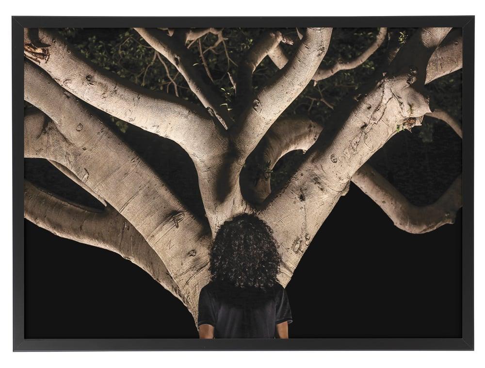 Image of The tree (Tirage d'art 1/10 ex.)