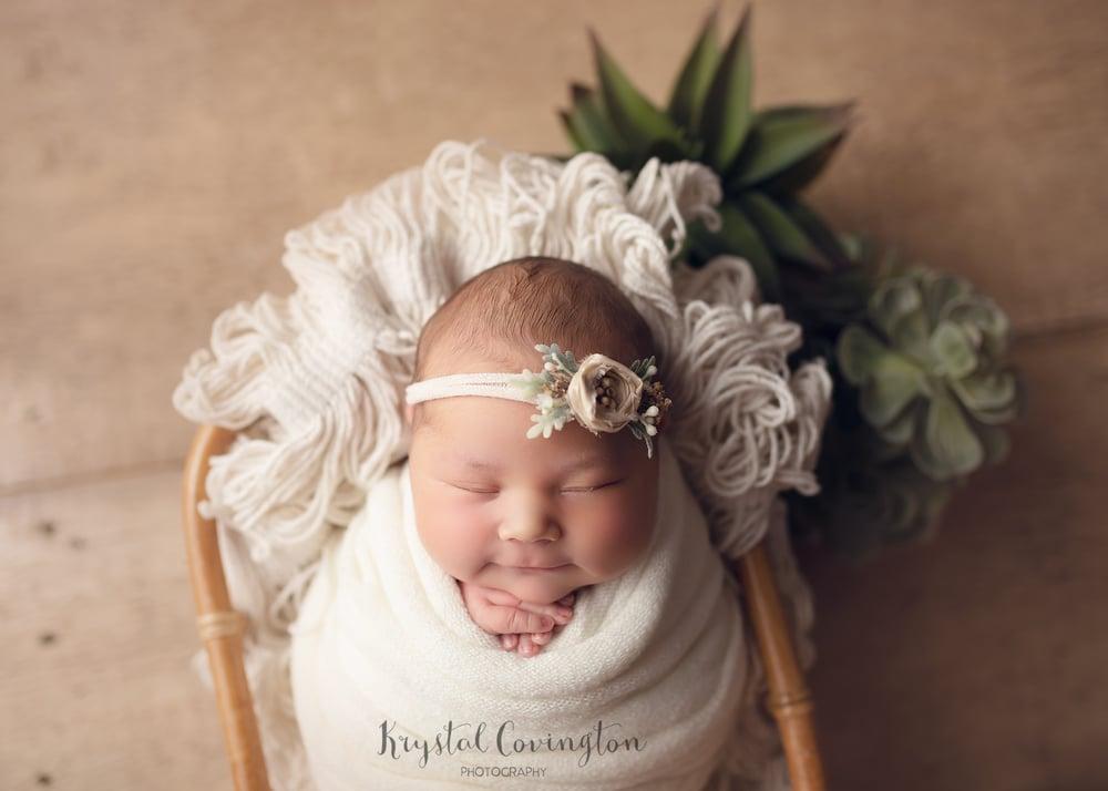 Image of Wrapped Newborn Mini Session