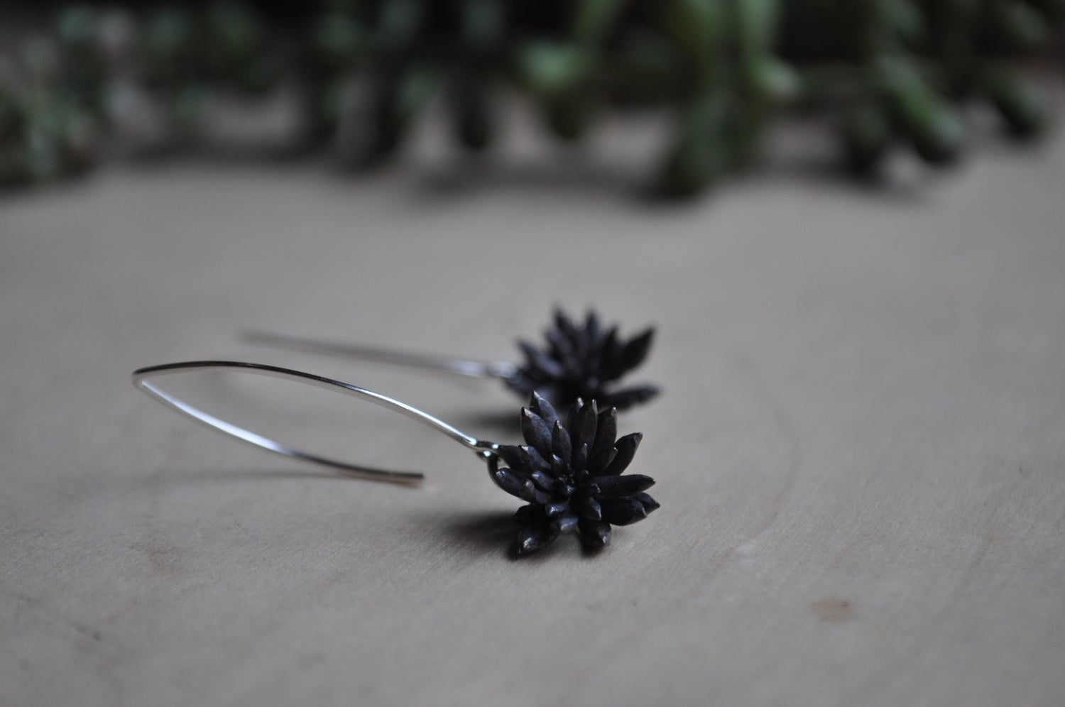 Image of One of a Kind Succulent Dangles - Spike Variety