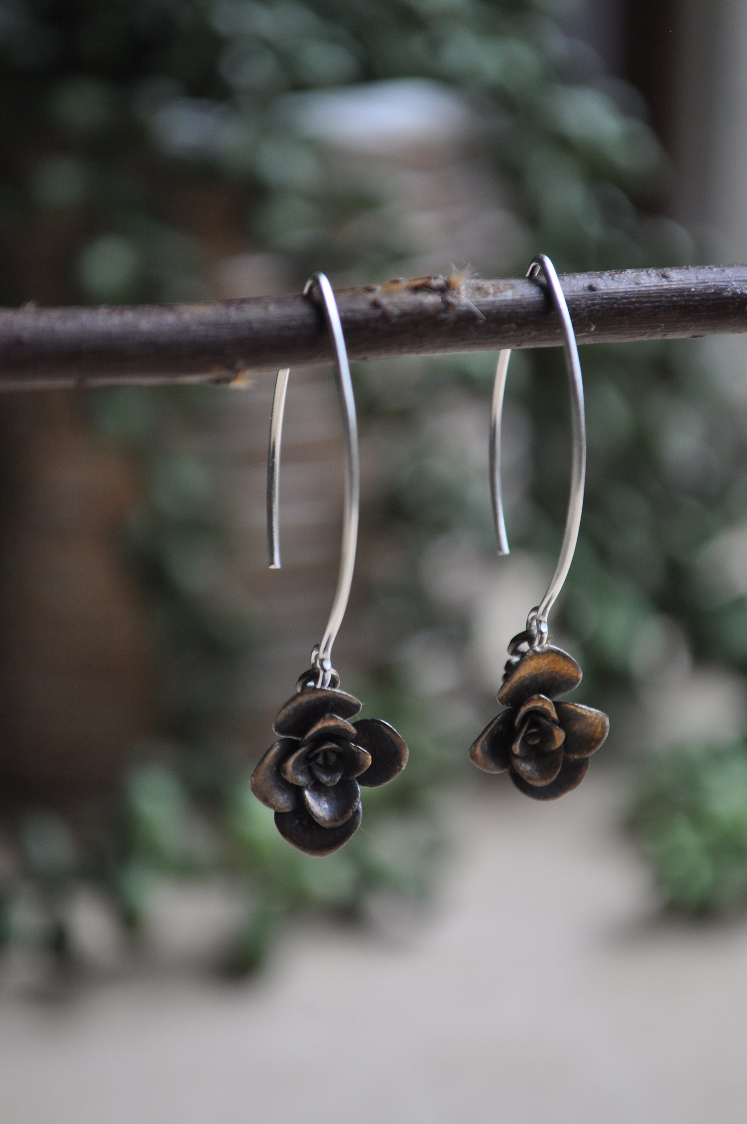 Image of One of a Kind Succulent Dangles - Rosette Variety