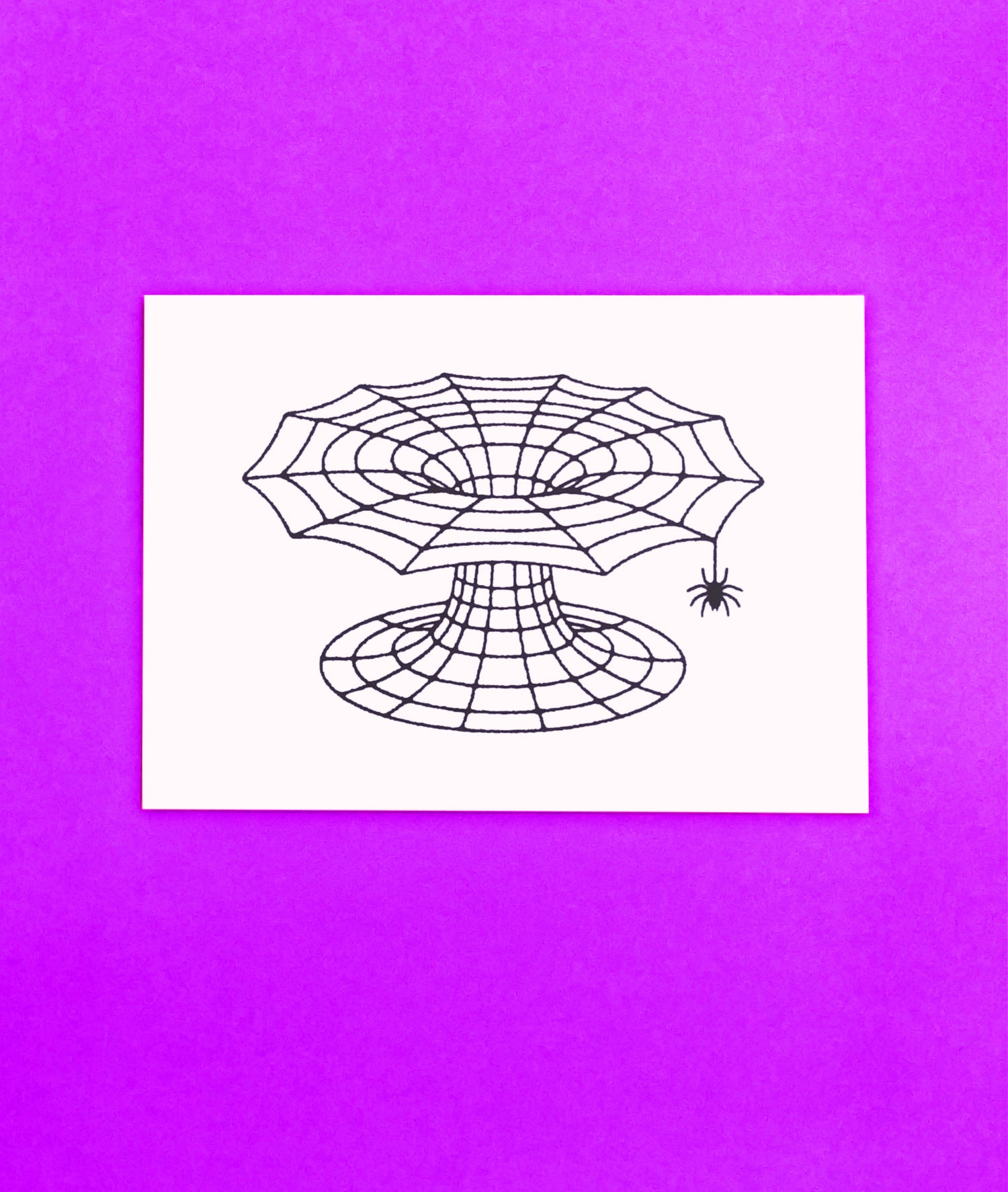 The Itsy Bitsy Spider Wove a Wormhole