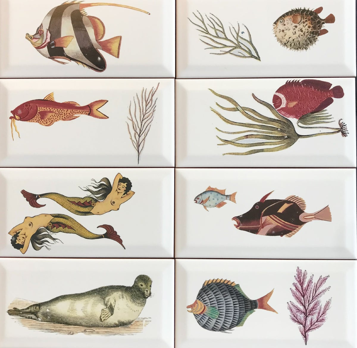 Group of Fishy Tiles
