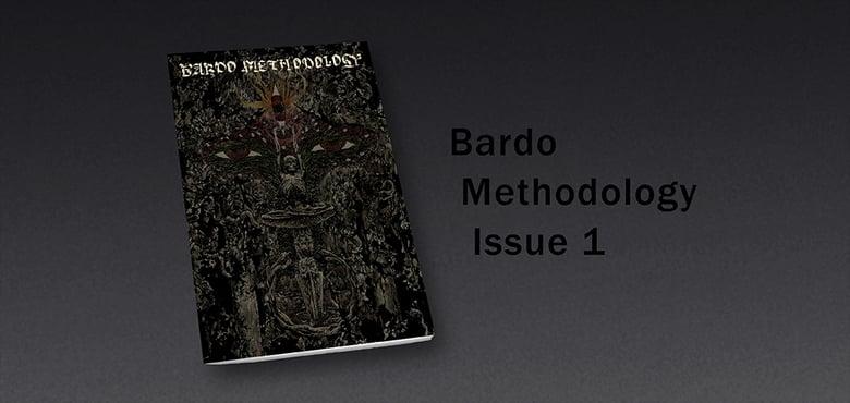 Image of Bardo Methodology #1
