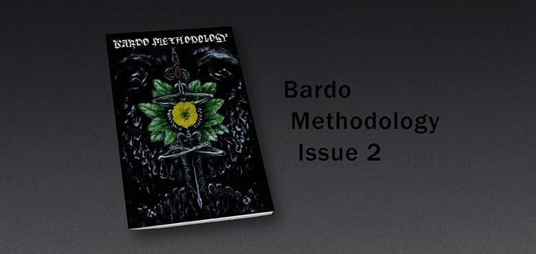 Image of Bardo Methodology #2