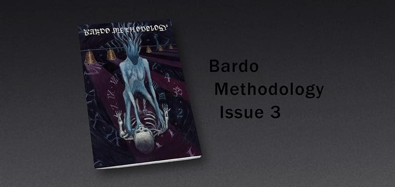 Image of Bardo Methodology #3
