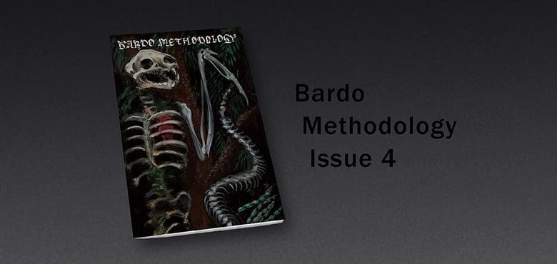 Image of Bardo Methodology #4