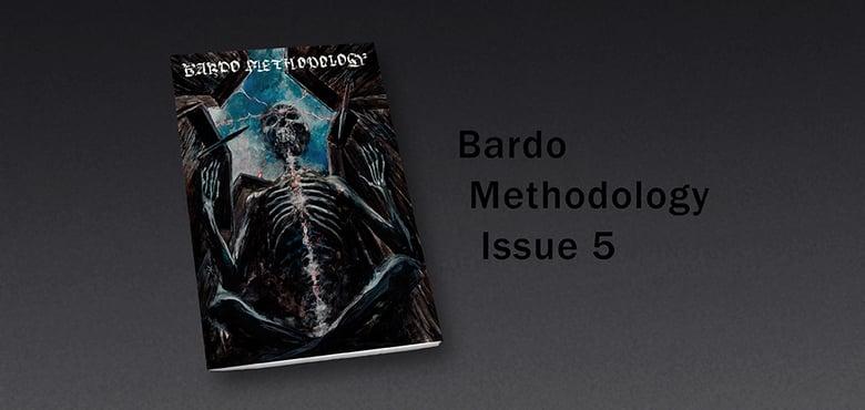 Image of Bardo Methodology #5