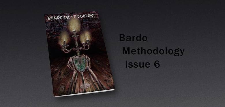 Image of Bardo Methodology #6