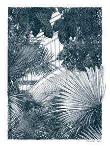 Image of Kew- Palm