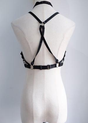 Image of SAMPLE SALE - Unreleased Harness 03