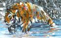 Tiger Painting - Print