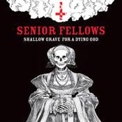 "Image of Senior Fellows ""Shallow Grave for a Dying God"" vinyl LP"