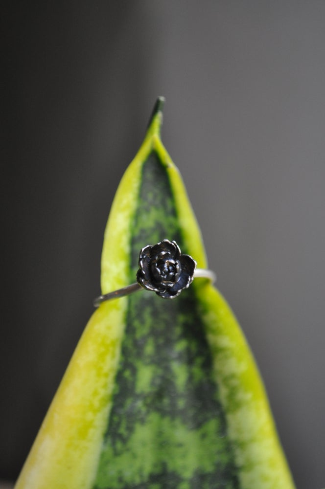 Image of One of a Kind Succulent Ring - Ruffled Variety