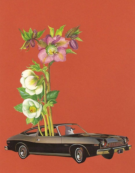 Image of Hellebores on wheels. Limited edition collage print.