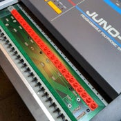 Image of Roland Juno-106, JX-3P, Alpha Juno 1 Style Key Contacts