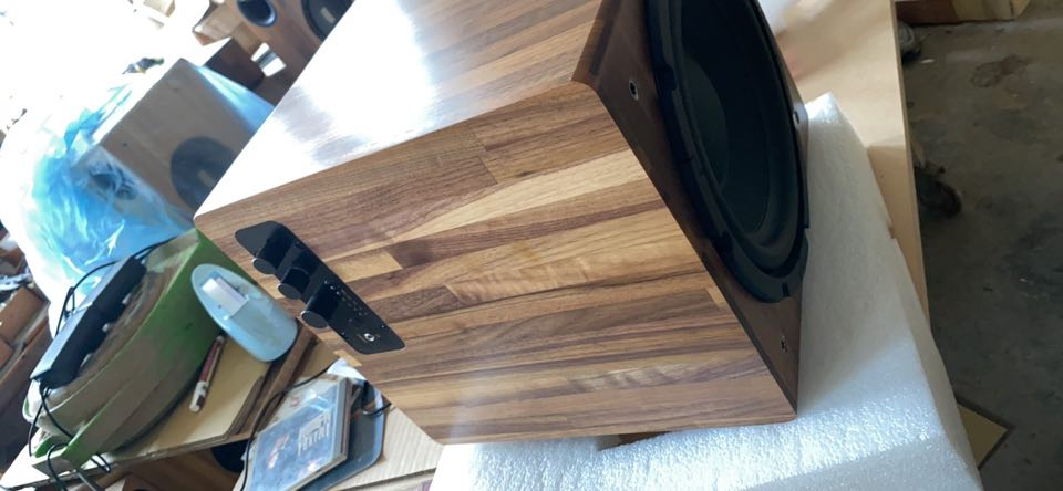 """Image of 10"""" subwoofer for Lubos"""