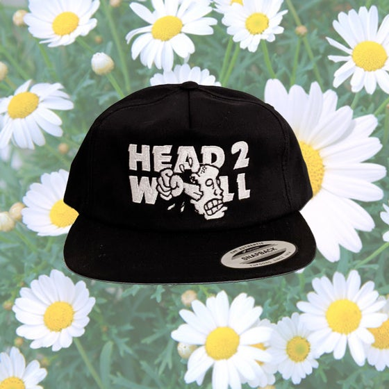 Image of Embroidered Wayne's World X H2W Snapback Hat