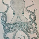 Image 2 of Octopus Green edition Screen print