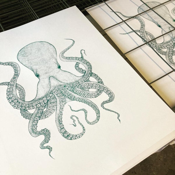 Image of Octopus Green edition Screen print